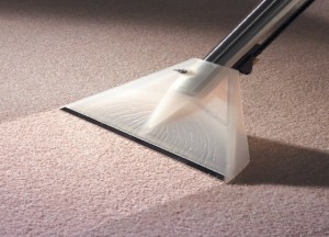 Dry Carpet Cleaning Raleigh